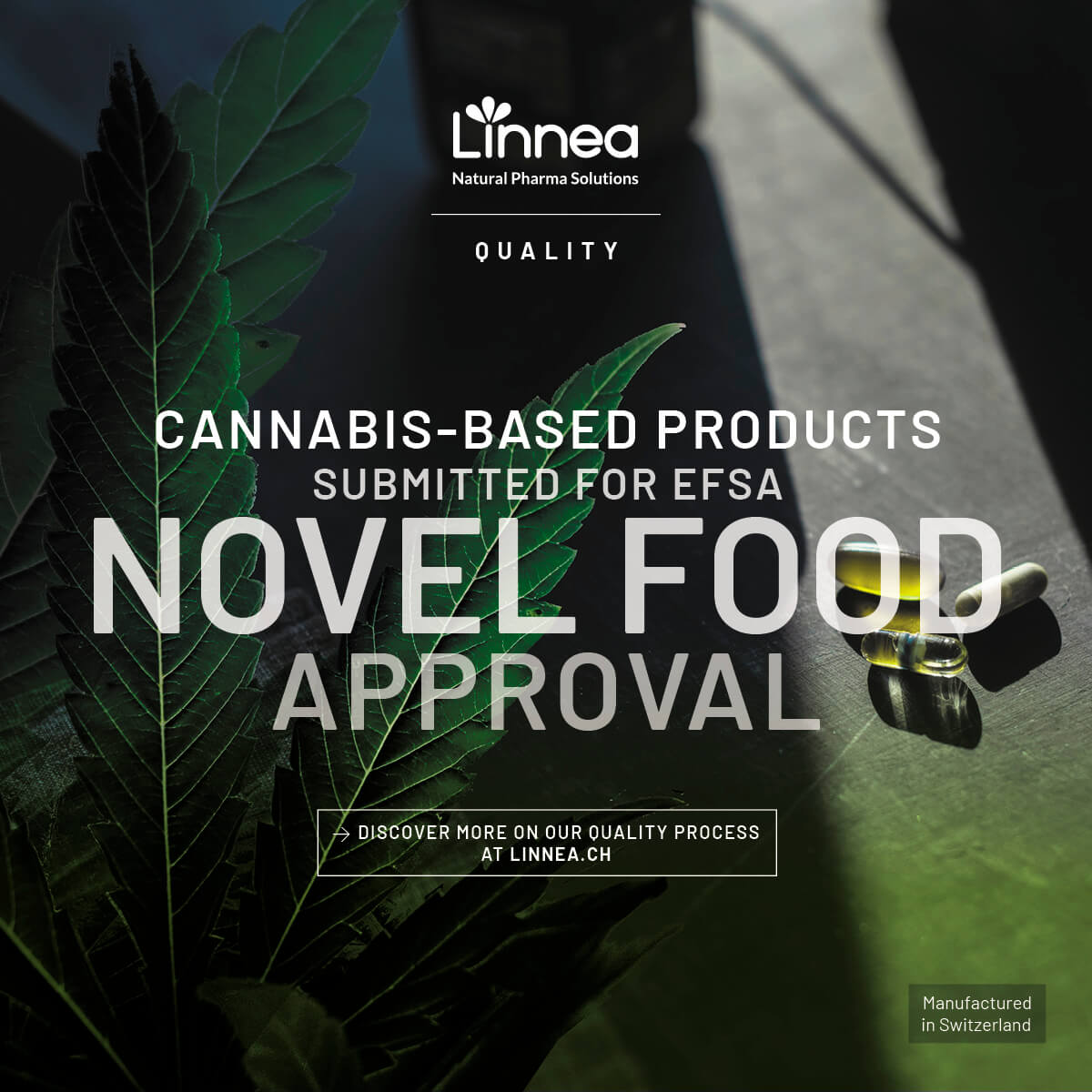 Linnea Cannabis-based products submitted for EFSA Novel Food approval
