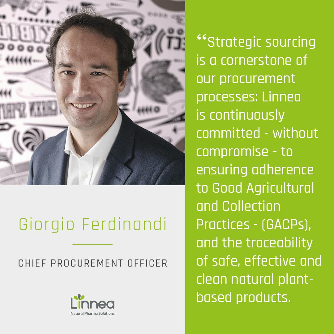 Strategic sourcing is a cornerstone of Linnea's procurement processes